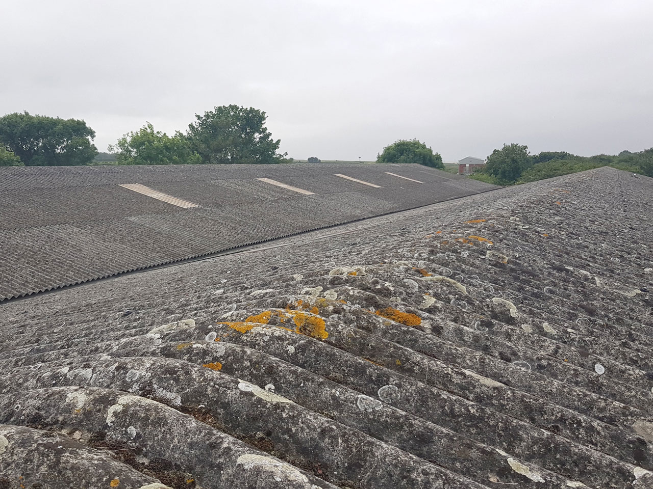 Removal & disposal of asbestos containing corrugated  roof sheets off a factory roof in Highbridge, nr Bridgwater Somerset